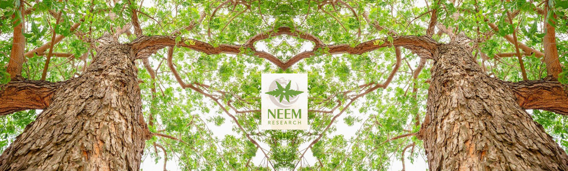 NEEM-NATURE'S HEALING GIFT TO HUMANITY